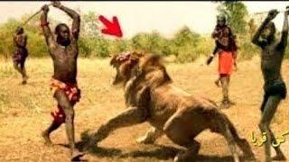 شاهد صراع الحيوانات مع البشر !! شئ لا يصدق