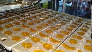 YX150 FRUITS JELLY CANDY PRODUCTION LINE, JELLY CANDY MACHINES, JELLY CANDY EQUIPMENTS