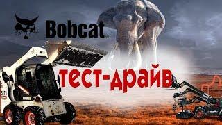 Способный Малыш. Тест-Драйв Bobcat S175/ Спецтехника.