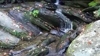 Video Goforth Creek download MP3, 3GP, MP4, WEBM, AVI, FLV Desember 2017