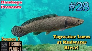 Fishing Planet   #28 - S3   Topwater Lures at Mudwater River!