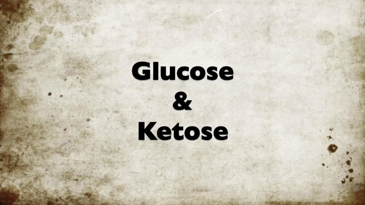 Ketose | Alle ins en outs