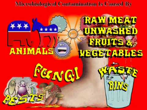 The Food Contamination Video