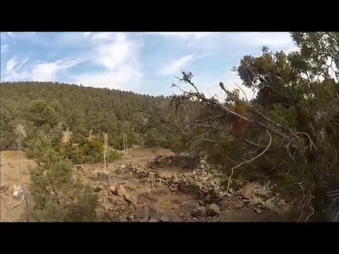 Lost Gold Mines of Los Padres National Forest