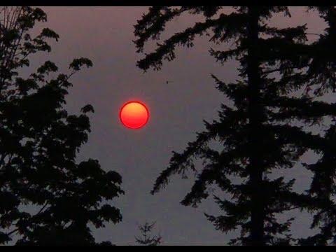 Brilliant Orange Sunrise Beams Through Smoky Skies