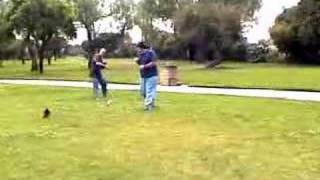 shoe fight in the park Thumbnail