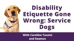 Disability Etiquette Gone Wrong: Service Dogs