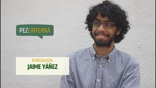 Conversaciones con Jaime Yáñez