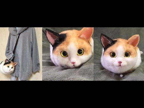 Сумки переноски для кошек в интернет-магазине Garden Zoo - YouTube