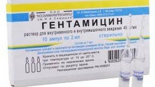 Гентамицин при простатите