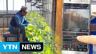 [녹색] 농업도 빅데이터 시대...생산 늘고 편해지고 …