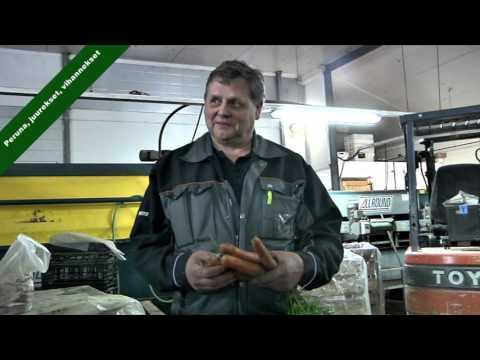Lilja Farms Oy - N-xt peruna ja vihannekset