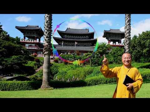 Vấn đáp: Luật nhân quả, không gian chùa ở hải ngoại, chướng duyên khi hộ trì Tam Bảo, con dâu thờ bố mẹ đẻ, tháng cô hồn, buốn bán ma túy, phước báu lễ Phật, hiểu lầm về quy y Tam Bảo, thờ cún