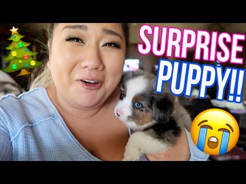 Thumbnail: SURPRISING MY BFF WITH A PUPPY!! Vlogmas Day 18