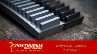 Posthumus Burgwerd | Tandheugel