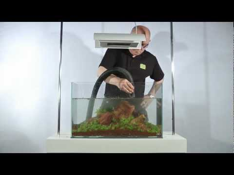 The Making of 'Five Stones' Aquascape and Guide to Iwagumi Layout by James Findley