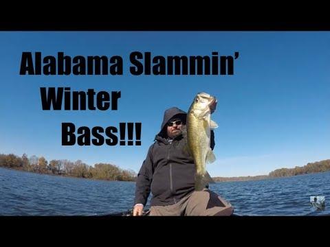 Winter Bass Fishing: Alabama Rig Wackin And Stackin!!!