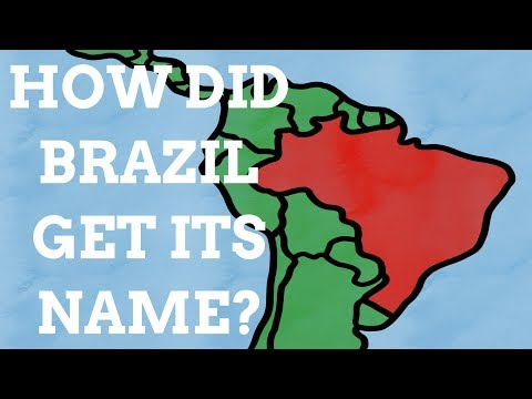 How Did Brazil Get Its Name?