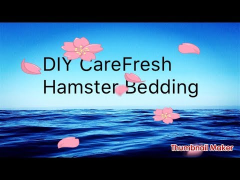 DIY CareFresh Bedding
