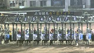 2013/08/17 高知競馬8R 地方競馬復活協会協賛 日本海特別 優勝 ダイワゴ...
