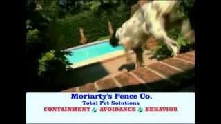 Moriarity's Fence Company