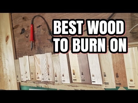The Best Wood To Wood Burn On