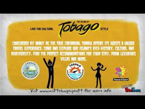 What to do in Tobago when you are there on a vacation