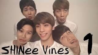Credit to the creators of the vines. Hope you enjoyed these idiots ...