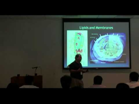 Introduction to Cell Biology (Part I)