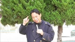 【今日の出来事と人物・用語集】<冠位十二階・制定>603年(推古天皇11...