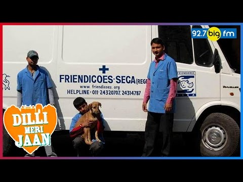 Friendicoes - Delhi's Dearest Shelter For Stray Animals | Dilli Meri Jaan | Richa Anirudh