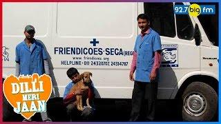Friendicoes - Delhi'...