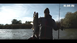 Риболовля на жереха 2019.Осінь.Астрахань.