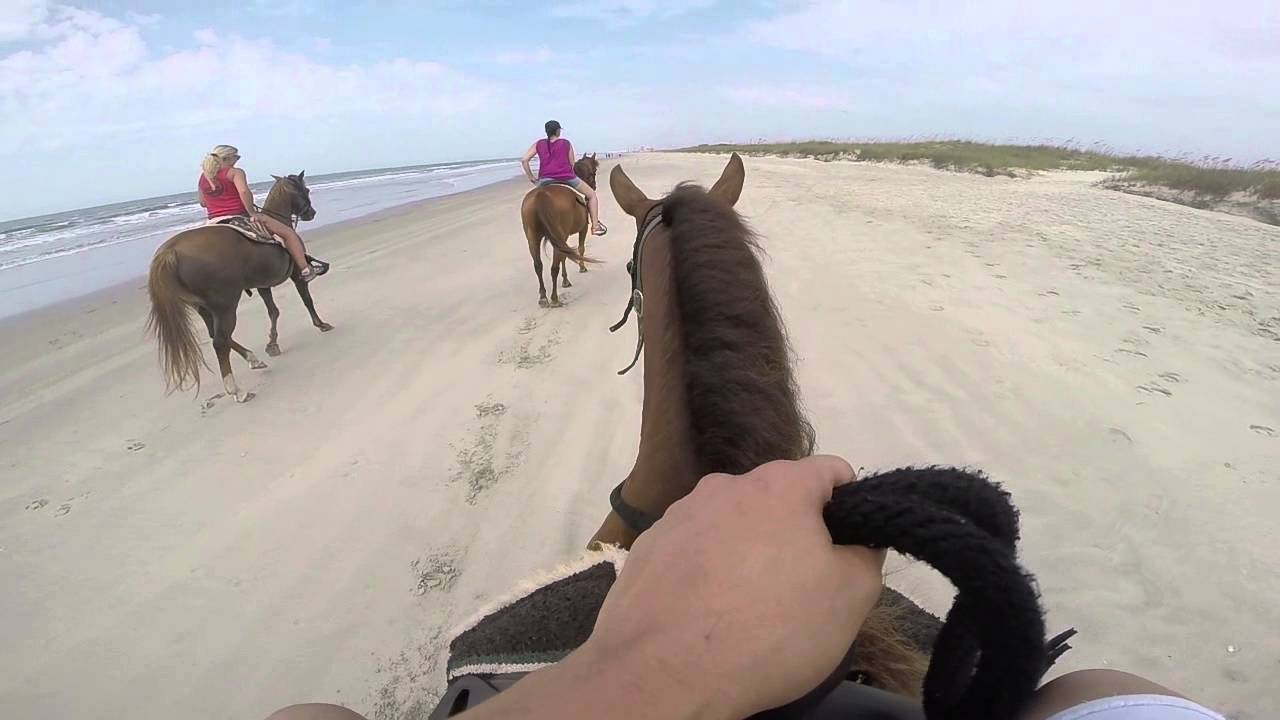 Horseback Riding In Myrtle Beach