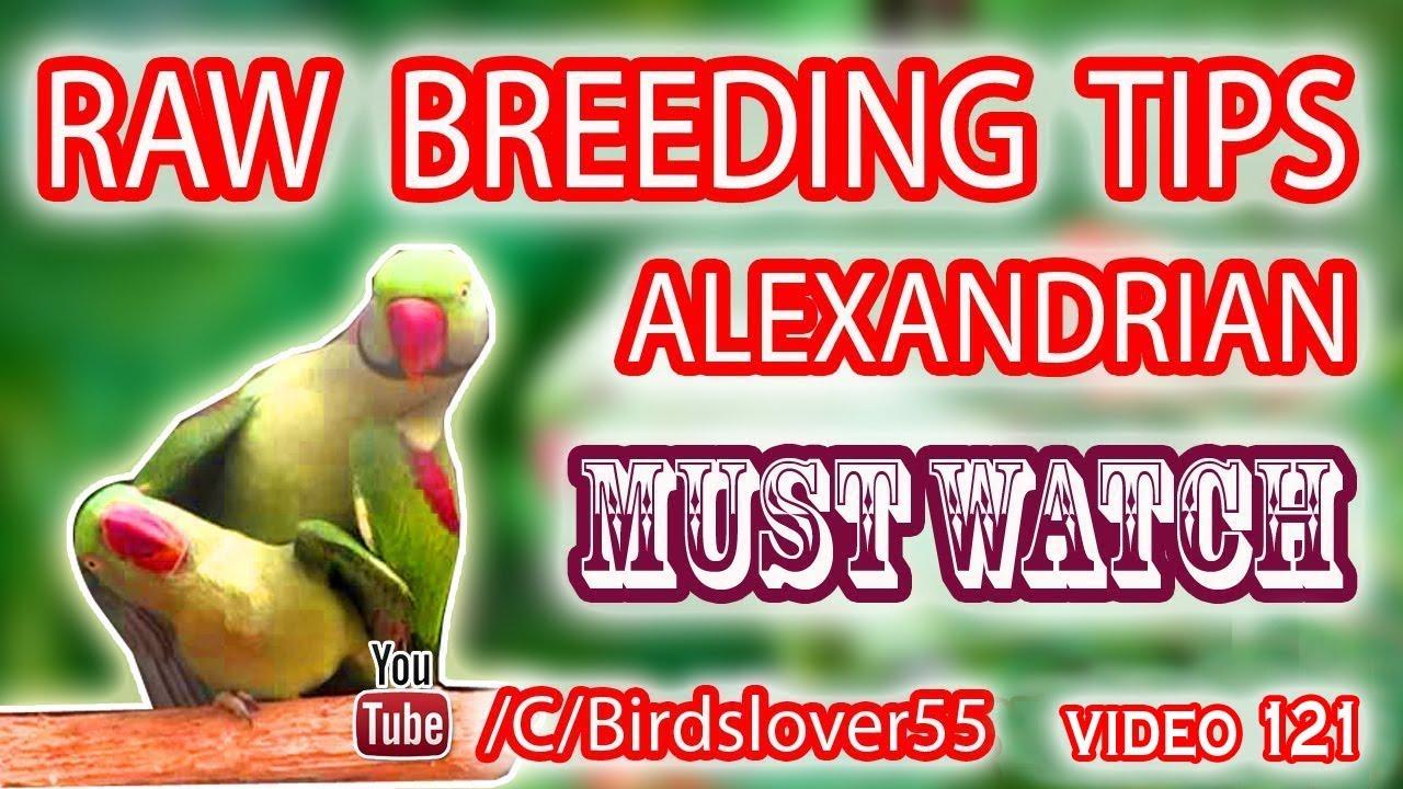 Home breeding