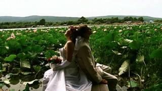 свадьба Алексея и Елены