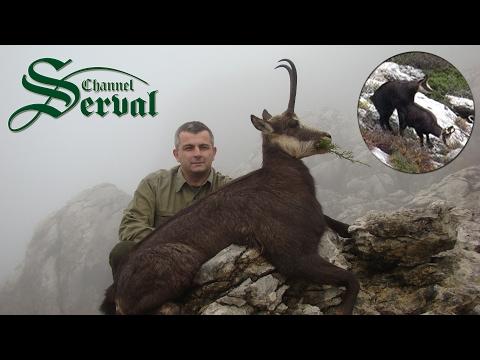 Balkan Chamois Hunting in the Croatian mountains -Velebit - Gamsjagd in Kroatien -Velebit