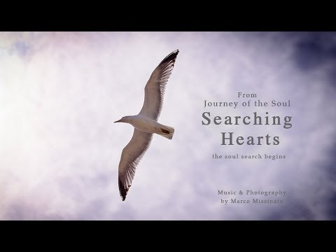 """SEARCHING HEARTS"" - The Soul Search Begins - By Marco Missinato"