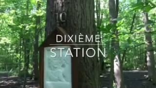 Video CHEMIN DE CROIX IV   Sanctuaire Maranatha download MP3, 3GP, MP4, WEBM, AVI, FLV Desember 2017