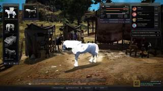 Bdo road to tier 9 dream horse part 2: the first attempt