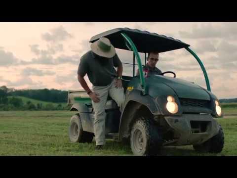 Dismiss® NXT Herbicide - Cool Season Turfgrass Green Kyllinga and