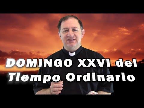 Domingo XXVI del tiempo ordinario - Ciclo C - No dejemos de hacer el bien a todos