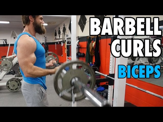 BARBELL CURLS | Biceps | How-To Exercise Tutorial