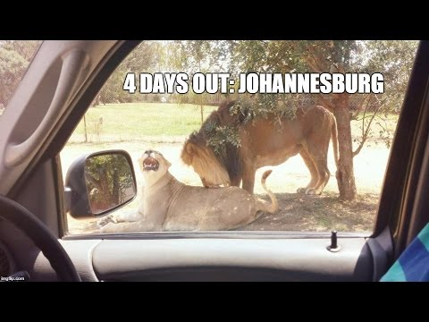 4 Days Out: Johannesburg| Exploring Johannesburg, South Africa