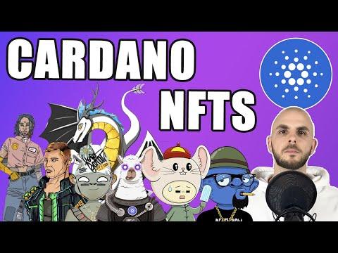 Cardano NFTS launching