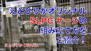 【えとぴりかOSAKA】SLPCケージの組み立て方!【オリジナルケージ】