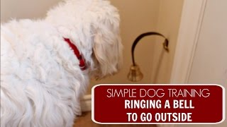 Easy Dog Training | Ringing a Bell to Go Outside