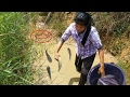Net Fishing at Pailin Province - Cambodia Traditional Fishing - Khmer Cast Net Fishing (Part 071)