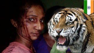 Manusia VS Harimau: wanita India lawan harimau dengan tongkat - TomoNews
