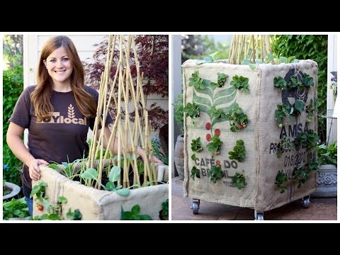 Diy Grow Box Vertical Gardening